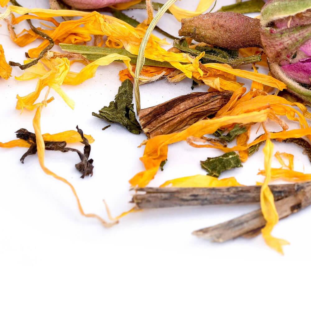Tea for Detoxification Programme