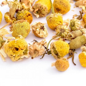 Chamomile-Flowers-01-Crop