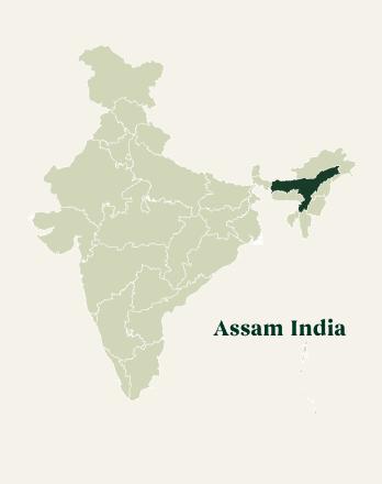 Map of Assam - India