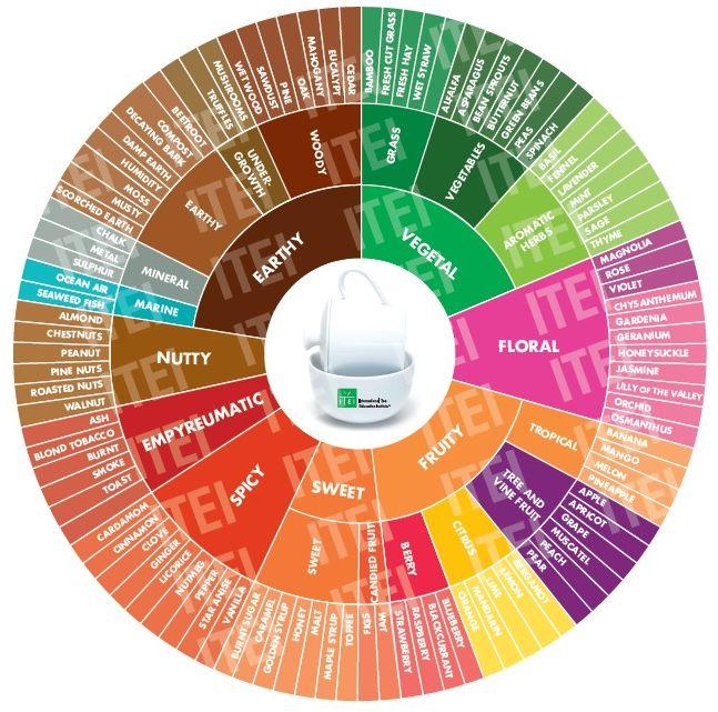 Tea tasting Wheel